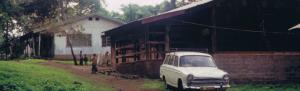 Tinga-Tinga-House_featured-720x220